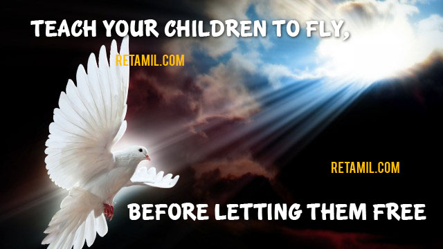 Teach your children to fly, before letting them free.