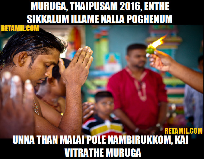 Thaipusam 2016 - how you can expect it to be