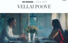 Vellai Poove Song Lyrics - ADK SriRascol & Teejay